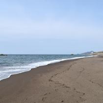 広大な日本海を散歩♪当館より歩いて約5分です!