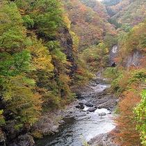 秋の長内渓流