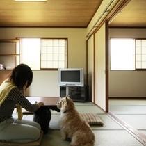 客室-和室20畳☆3~6名でご利用になれます
