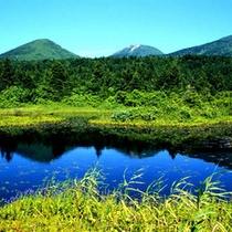 周辺風景(八甲田)