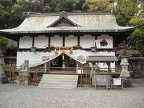 ホテルからすぐ近く!観光名所【闘鶏神社】