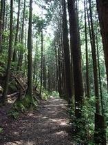 【世界遺産熊野古道】の拠点に便利