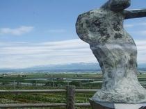 【周辺観光】〜富良野ワイン工場近郊〜