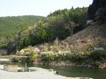 温泉の湧く大塔川