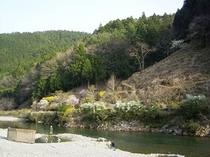 ペンション前の温泉が湧く大塔川