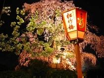 名所旧跡-円山公園4