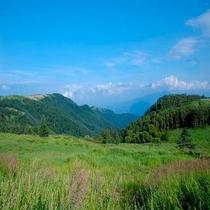 【美ヶ原③】標高2000mに広がる高原からは、北アルプスはもちろん浅間山、南アルプス連峰、富士山も見