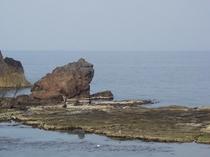 名勝 かえる島