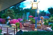 016年6月オープン 奥庭茶屋『アルプス』座敷で山梨産の赤ワインや白ワインご用意約25メーター人口大