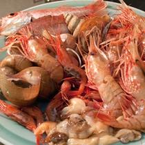 *海鮮食材 -イメージ-