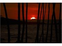海浜公園の夕日