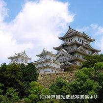 ホテル観光世界遺産姫路城