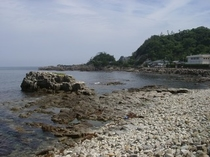 目の前の海岸