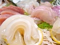 地魚のお造り。近くの漁場でその時々にとれる旬の地魚をオーナーが一匹づつ手にとり良い魚を仕入れます。