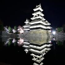 松本城ー桜