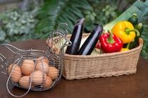鳳凰卵とお野菜