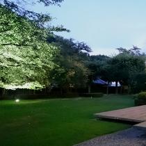 *夏の宵口の庭園