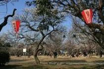 大宮第二公園