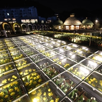 【ラグーナテンボス】夜はライトアップ★季節の花を楽しめるフラワーラグーン♪