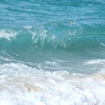 夏は目の前の海で海水浴&花火♪