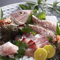 「 新鮮地魚介の造り盛り 」の一例