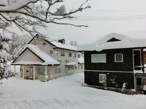 2012年12月、雪が降り続くアッサム