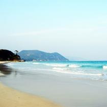 *白浜海岸