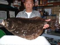 大きなヒラメ