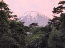初夏 夕日に染まる富士山
