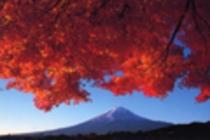 秋は紅葉の季節 富士山と紅葉