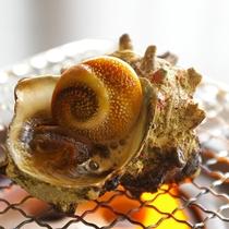 【夕食一例】サザエの壷焼き(別注承ります)