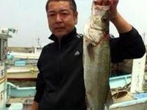 板前が釣ってきました。今季節魚がおいしいです。
