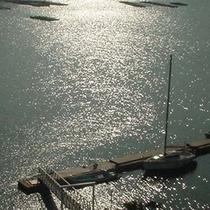 小浜湾風景