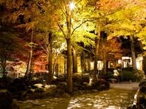 秋のお庭が奏でる日本の旅情を心ゆくまでご堪能下さい(紅葉は10月中旬〜11月上旬頃)