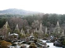 庭園風景(冬)