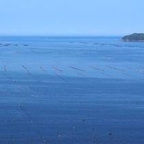志津川湾の絶景!
