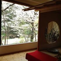 新館「桐の花」ロビーから見える桜です。