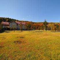 秋の大草原