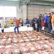 さぁ!競りが始まりました。 津居山はオークション、柴山は一発方式と競りの方法も漁港ごとに異なります。