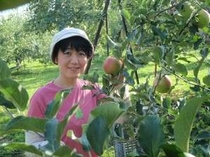 塩崎農園での「りんご」狩り風景