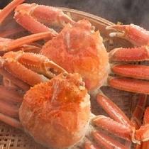 富山湾で穫れた紅ズワイ蟹をご賞味下さい