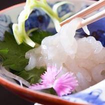 富山湾の宝石◆白海老のお刺身◆
