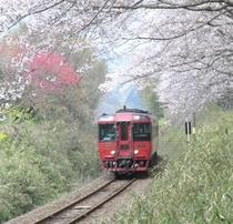 <観光情報>九州横断鉄道