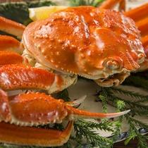 ずわい蟹(通年)