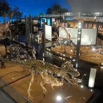 恐竜博物館(当館から車で60分)