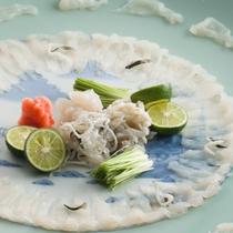 河豚料理(てっさ)イメージ