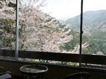 客室より春の風景