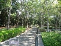 ホテル周辺画像(東大浜公園)