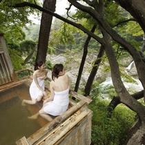 露天風呂からは眼下に小さな滝も見られる