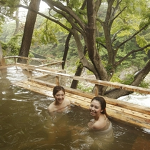 渓谷を一望する壮観な露天風呂